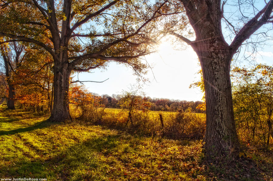 We're Here To Stay by JustinDeRosa