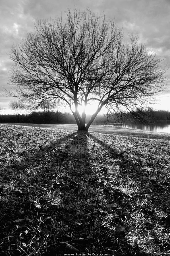 Creeping Shadows by JustinDeRosa