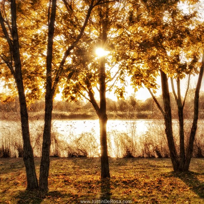 Autumn's Treasure by JustinDeRosa