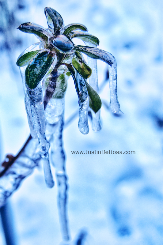 Frozen Tears by JustinDeRosa