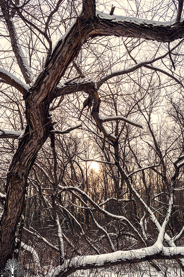 Twisted by JustinDeRosa