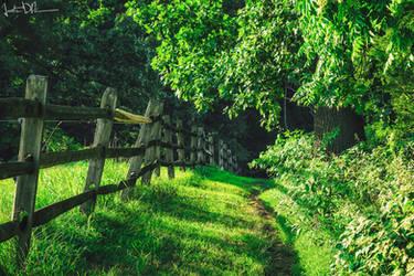 Emerald Journey by JustinDeRosa