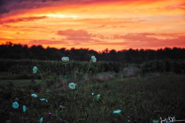 Sunset Breeze by JustinDeRosa
