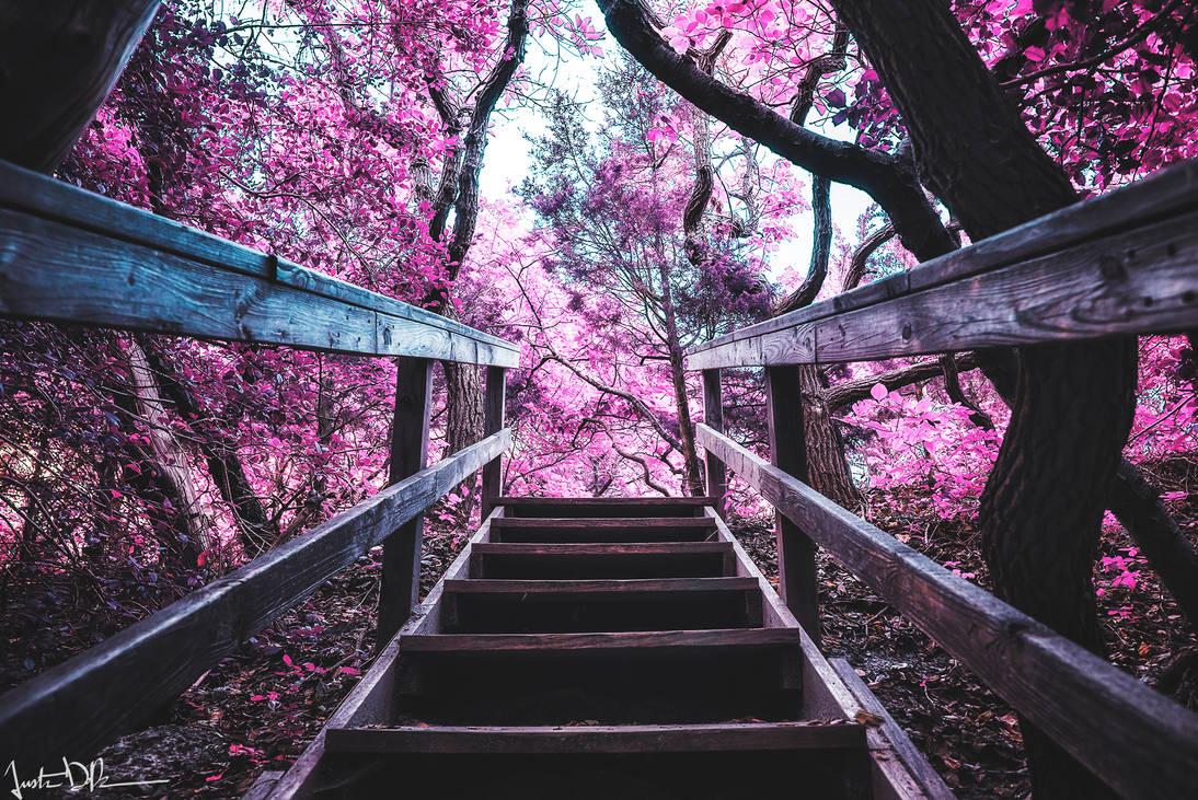Enchantment by JustinDeRosa