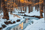 As Winter Fades
