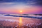 Ocean Dreaming