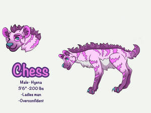 Chess Reference Sheet