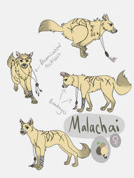 Malachai Reference Sheet