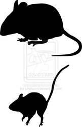 Peromyscus mice