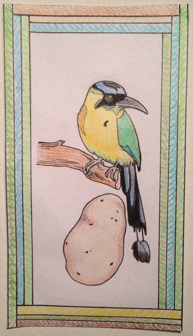 Potato and Motmot #2 by juliolsson