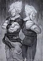 Goku and Vegeta by waLek05