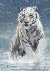 Snow Tiger by waLek05
