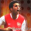 Francesc_4_Fabregas_by_bosslife