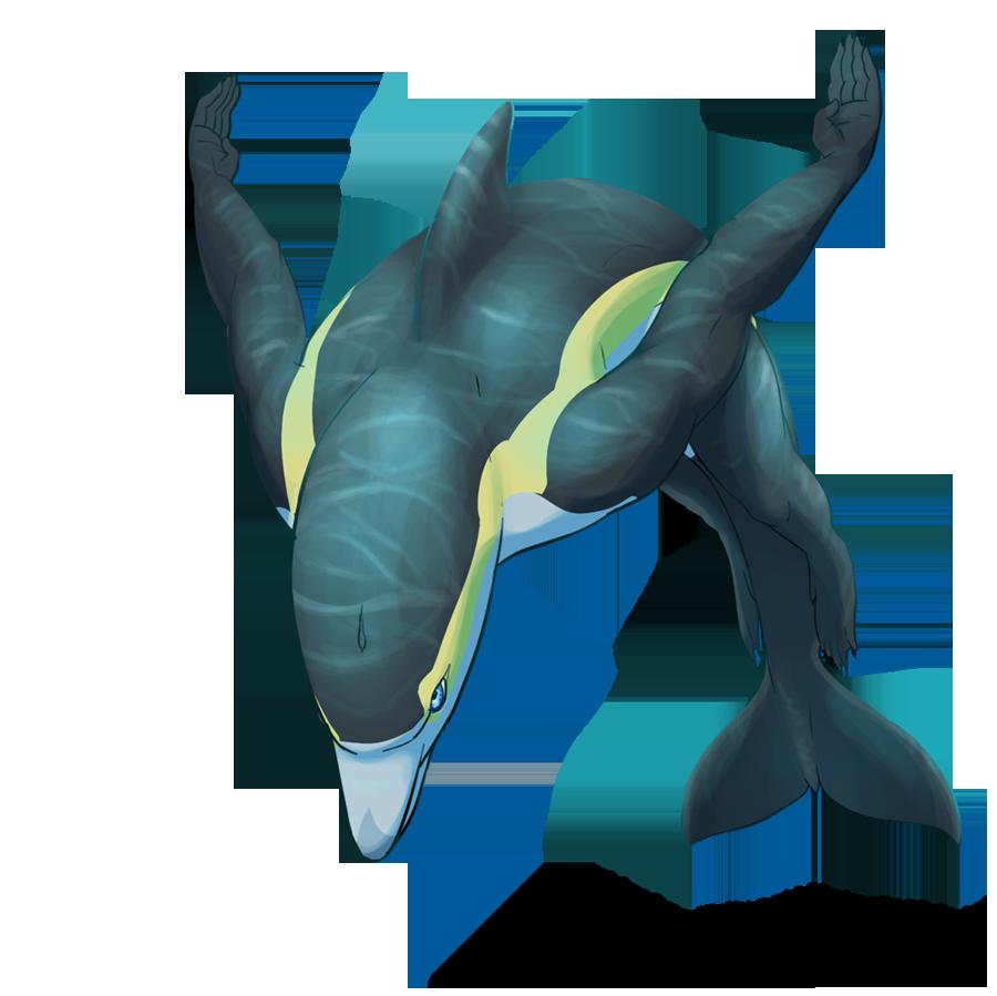 angelo kotsis the dolphin torch essay