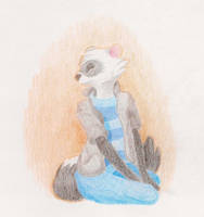 Fuzzy Ferret by MadPuffball