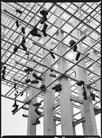 Shoewashingday by danielglauser
