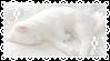 Sleepy White Kitty! Stamp by Aesthetic-Peachille