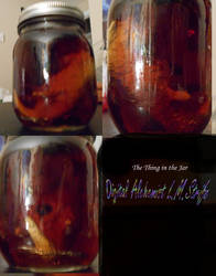 Thing in the Jar Mulitview by lavitzstrife