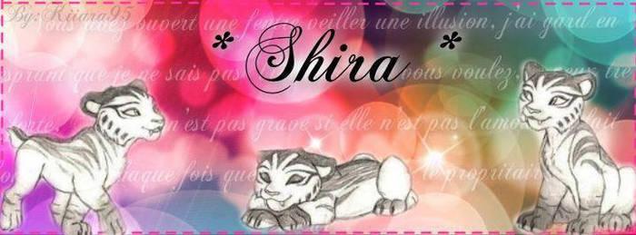 timeline cover Shira 2