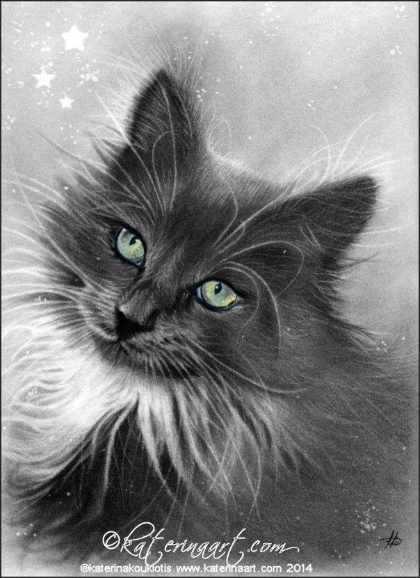 Kitty Magic by Katerina-Art