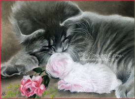 Sweet Kitties by Katerina-Art