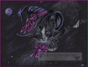 Bewitching kitty