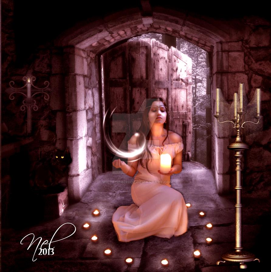 Conjurer by Wiltedorchidz