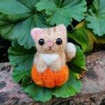 Needle Felted Halloween Cat in a Pumpkin
