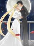Bunny and Mamoru