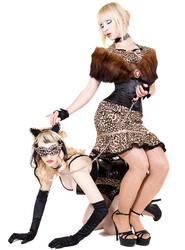 Cats by Alpha-Lexx