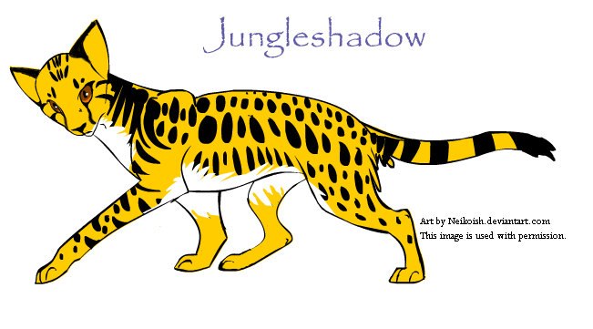 Create a Warrior Cat: Jungle by Fire-Goddess6 on DeviantArt