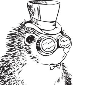 MrSTimmyHog's Profile Picture