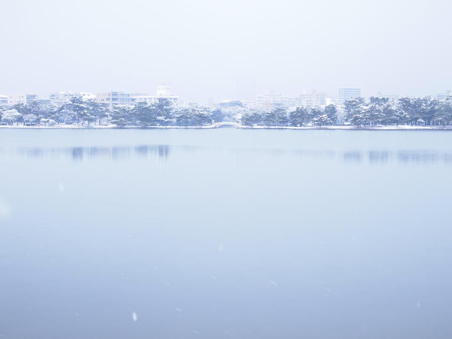 snowy day by yukino-k