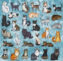 Spot your cat!