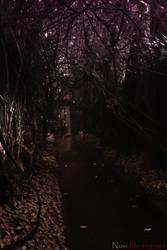 Darkness by Vieyupie