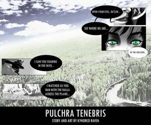 Pulchra Tenebris Comic (Pg.16) - Solas/Lavellan by KyndredRaven