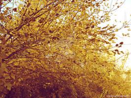 Tree Life I