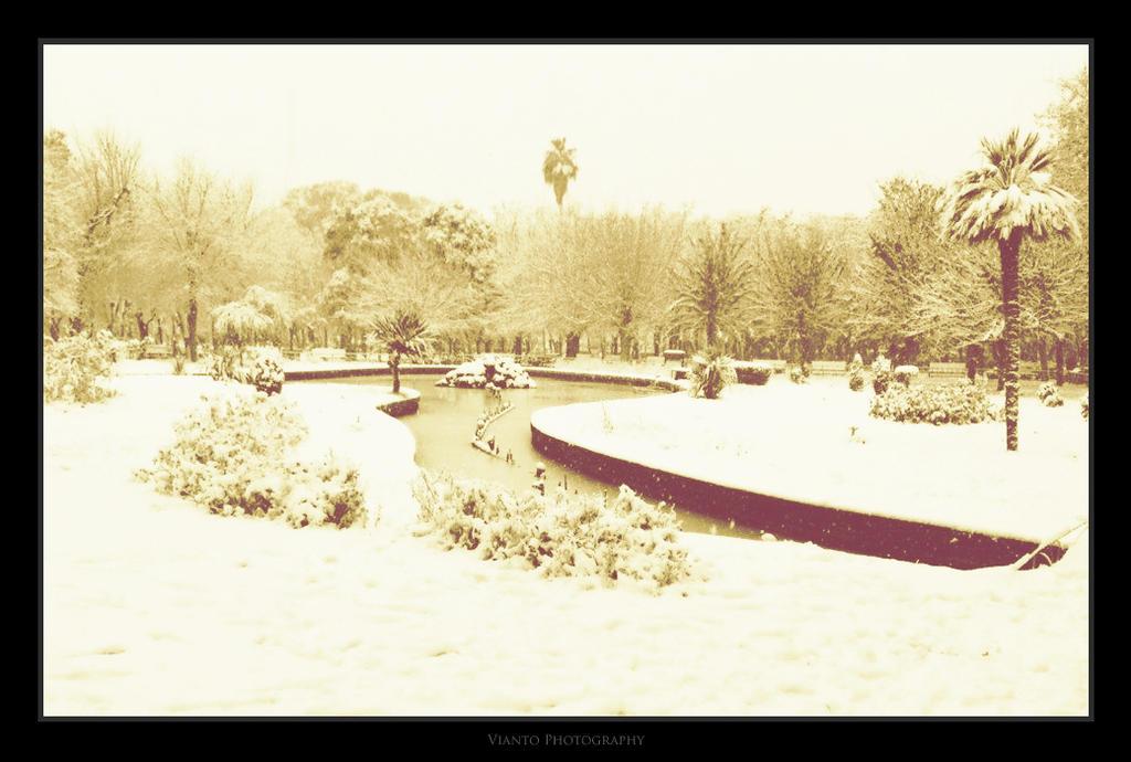 SNOW I by Vianto