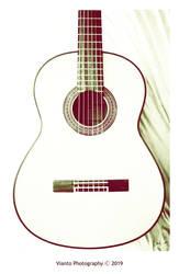 Flamenco Guitar I by Vianto