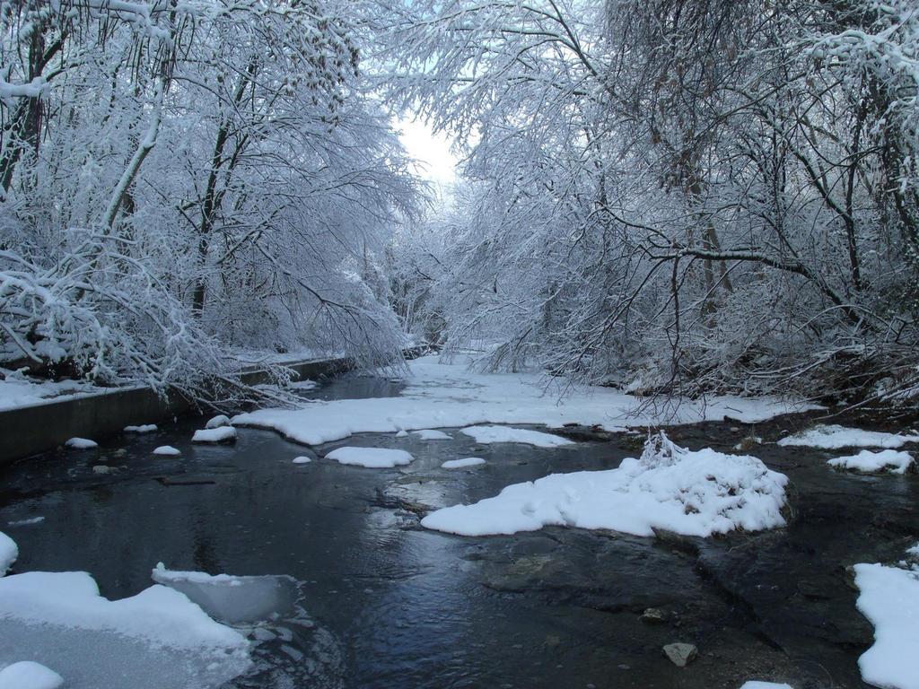 Curtis Creek after 1st Snowfall 2013 by Myrddin88