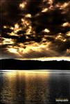 Golden Tears in Blackend Water