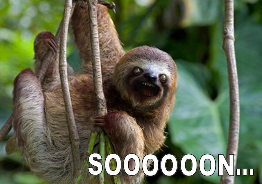 Photoshop sloth by SarahCascadden