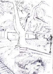 Tree in Ilhabela