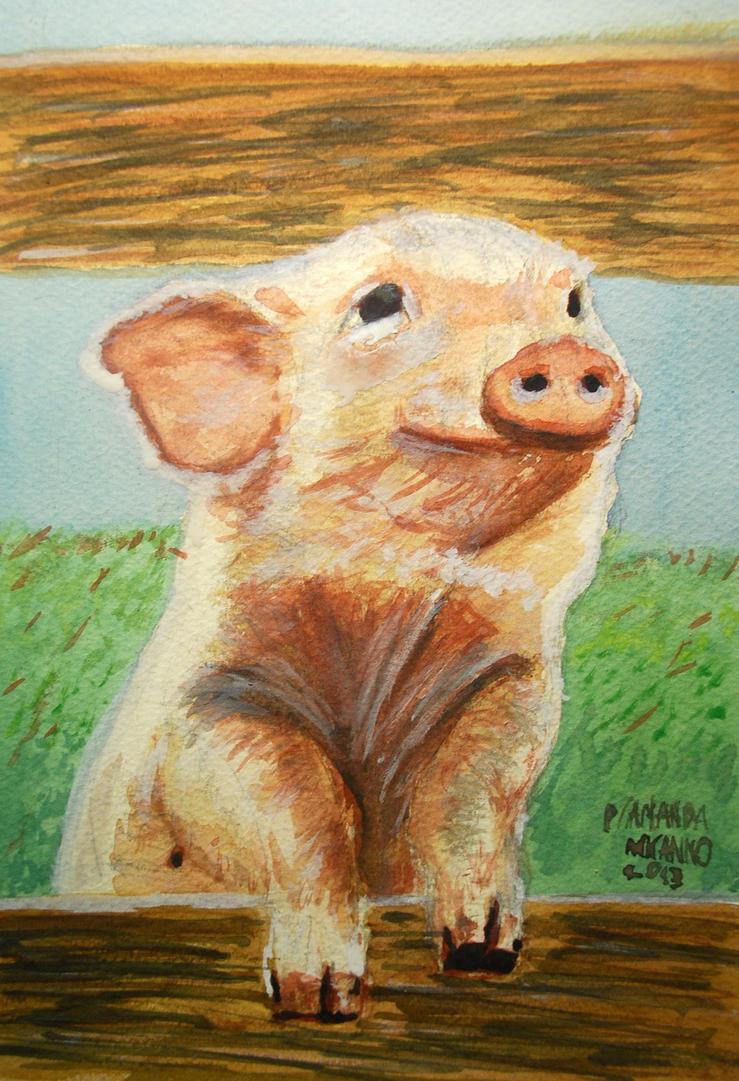 Happy pig! by MauricioKanno