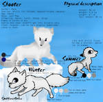 Shooter reference sheet by SpitfiresOnIce