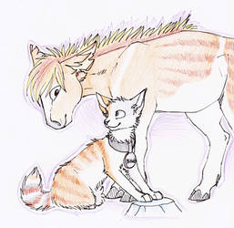 A cat and a horse thing by SpitfiresOnIce
