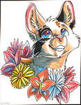Hawkie, but with flowers by SpitfiresOnIce