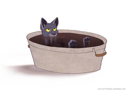 Oil Bath