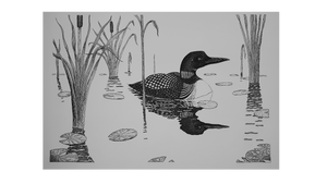 loon and lily pads pen and ink