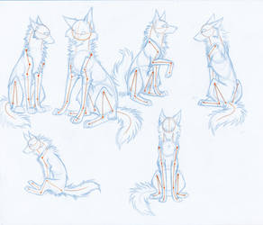 HowToDrawWolves: SittingPoses
